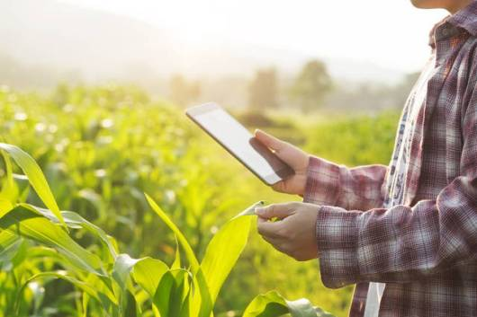 Revolusi Industri 4.0 Sektor Pertanian